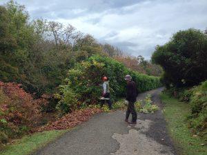 Garden Path Upgrades  (15)
