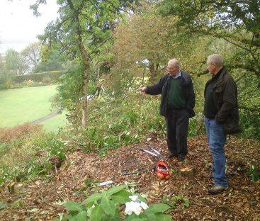 Garden Path Upgrades  (2)