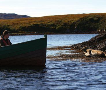 SealBoat2