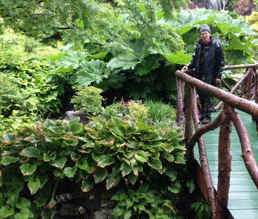 Water Garden Bridge Repairs  (12)