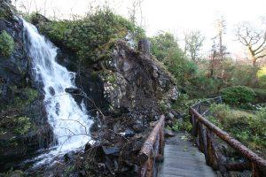 Water Garden Bridge Repairs  (2)
