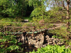 Water Garden Bridge Repairs  (5)