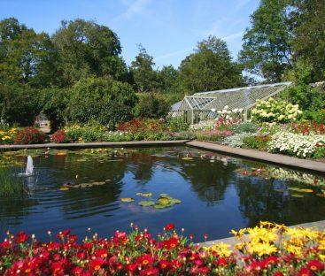 gardens (65)