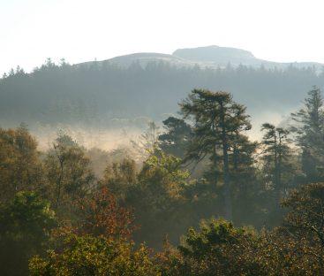 Dunvegan Castle Library Pics (56)